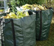 Waste Management Tips You Need to Consider